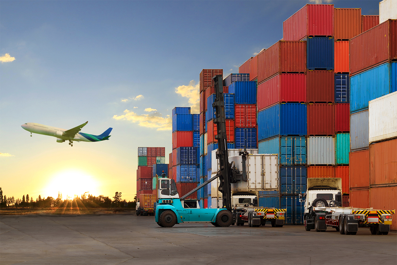 The Freight Forwarder