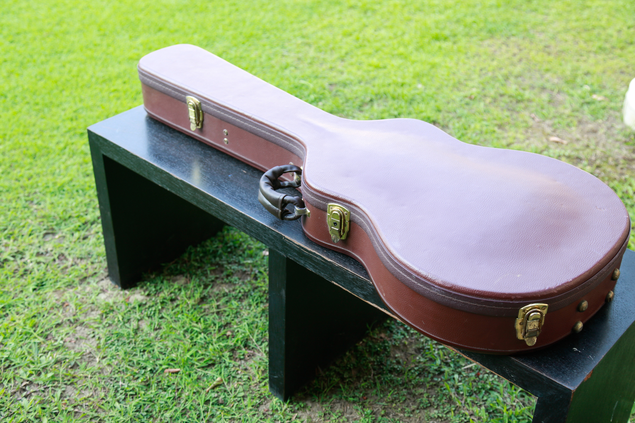 Guitar Bag At a table on the lawn
